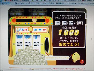 1000point2011-11-14_8847.jpg