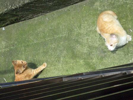 2007.10.10-135berandasita2h.jpg