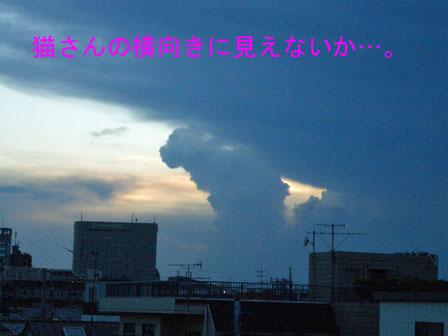 2010-07-22_猫横向き雲2863.jpg