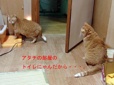 2011-12-10_9615.jpg