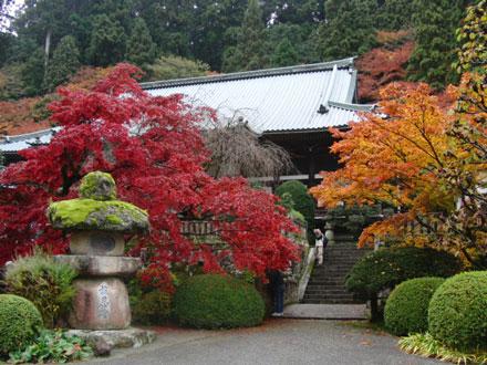 2012-11-26_6537.jpg