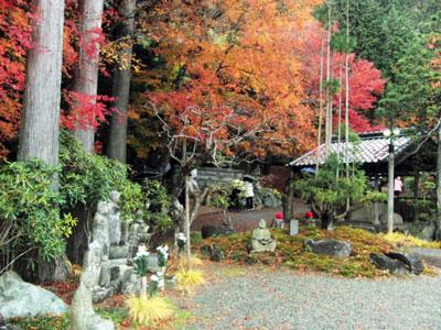 2012-11-26_6601.jpg
