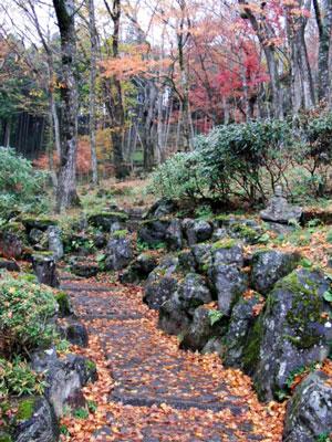 2012-11-26_6625.jpg