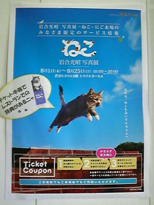 2013-09-_1104.jpg
